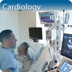 Online Ultrasound Course for Cardiology: Core Clinical Module
