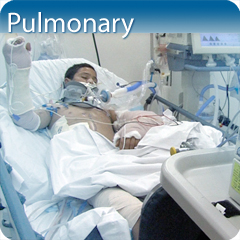 Online Ultrasound Course for Pulmonary: Core Clinical Module
