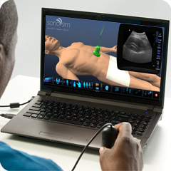 Ultrasound Simulator for Aorta/IVC: Core Clinical Module