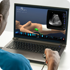 Ultrasound Simulator for FAST Protocol: Core Clinical Module