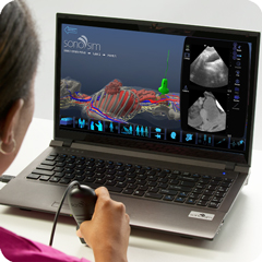 Ultrasound Simulator for Female Pelvis: Anatomy & Physiology Module