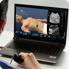 Ultrasound Simulator for Basic Abdomen Package