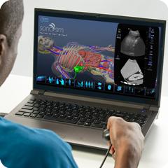 Ultraschall-Simulator für Leber: Anatomie & Physiologie-Modul