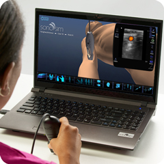Ultrasound Simulator for Peripheral Venous Access: Procedure Module