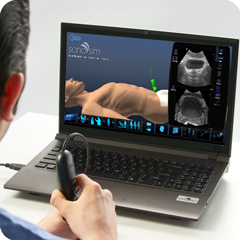 Ultrasound Simulator for Prostate: Anatomy & Physiology Module