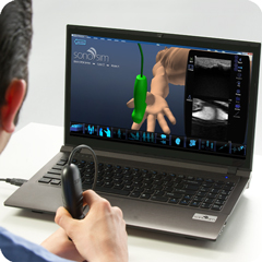Ultrasound Simulator for Introduction to MSK: Anatomy & Physiology Module