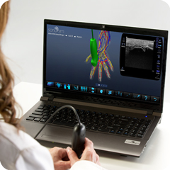 Ultrasound Simulator for Hand & Finger: Anatomy & Physiology Module