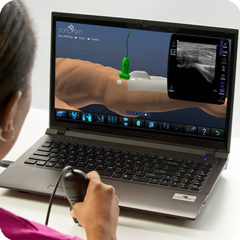 Ultrasound Simulator for Hip: Anatomy & Physiology Module
