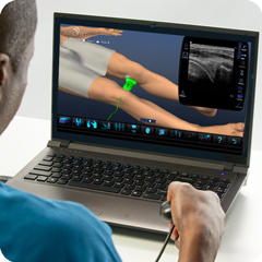 Ultrasound Simulator for Knee: Anatomy & Physiology Module