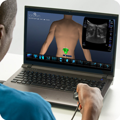 Ultrasound Simulator for Spine: Anatomy & Physiology Module