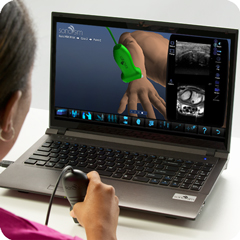 Ultrasound Simulator for Wrist: Anatomy & Physiology Module