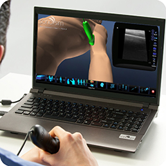 Ultrasound Simulator for Musculoskeletal: Core Clinical Module