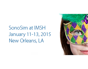 SonoSim Newsletter – Winter 2015