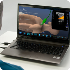 Ultrasound Simulator for Ultrasound-Guided Subclavian Vein Cannulation: Procedure Module