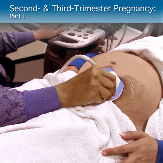 Corso di ecografia online per la gravidanza del secondo e terzo trimestre - Parte I: Modulo clinico avanzato
