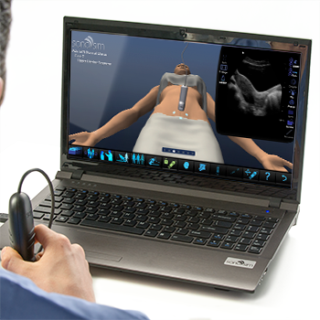 Ultrasound Simulator for GYN Ultrasound of Nonpregnant Normal Uterus: Advanced Clinical Module