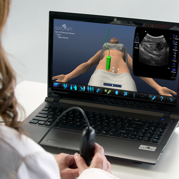 Ultraschallsimulator für GYN Ultraschall Normal Adnexa: Advanced Clinical Module