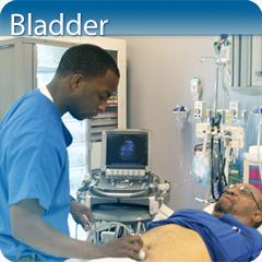 Bladder Ultrasound Course