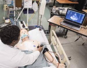 Cree y ejecute simulaciones de ultrasonido remotas con SonoSim LiveScan® y CaseBuilder